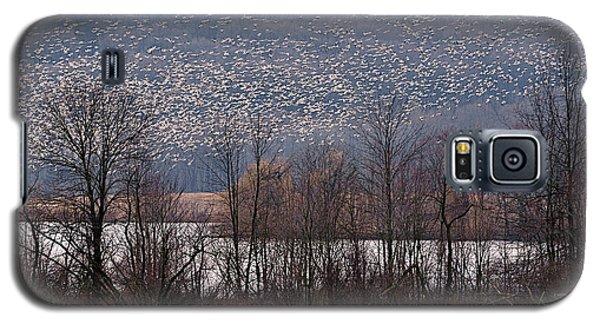 Snow Geese Rising Galaxy S5 Case