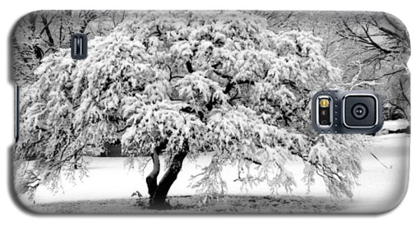 Galaxy S5 Case featuring the photograph Snow In Connecticut by John Scates