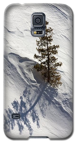 Galaxy S5 Case featuring the photograph Snow Shadow by Karen Lee Ensley