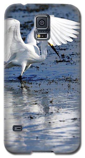 Snowy Egret Fishing Galaxy S5 Case