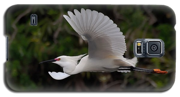 Snowy Egret In Flight Galaxy S5 Case