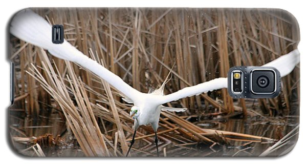 Galaxy S5 Case featuring the photograph Snowy Egret Liftoff by Mark J Seefeldt