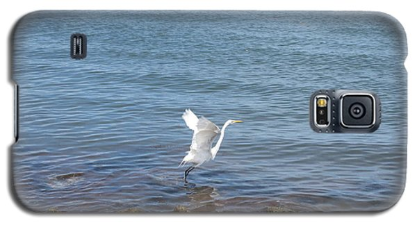 Galaxy S5 Case featuring the photograph Snowy Egret by Marilyn Wilson
