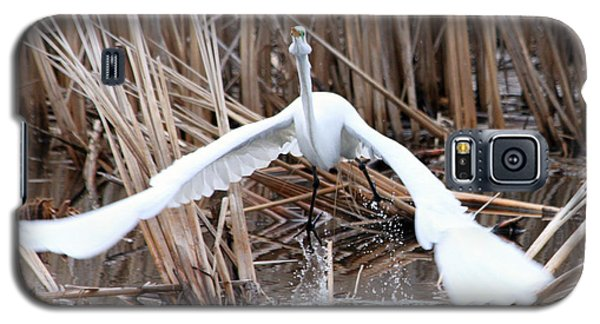 Galaxy S5 Case featuring the photograph Snowy Egret Takeoff by Mark J Seefeldt