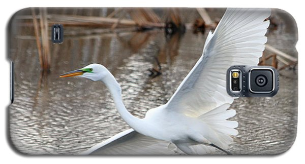 Galaxy S5 Case featuring the photograph Snowy Egret Wingspan by Mark J Seefeldt