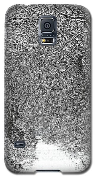 Snowy Path Galaxy S5 Case by Linsey Williams