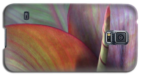 Soft Focus Petal Galaxy S5 Case