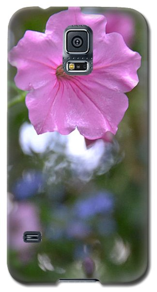 Soft Pink Galaxy S5 Case by Bonnie Myszka