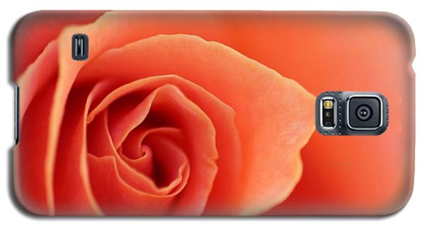 Soft Rose Petals Galaxy S5 Case