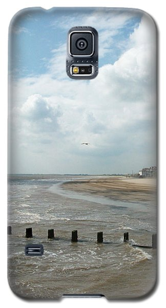 Solitary Seagull Galaxy S5 Case