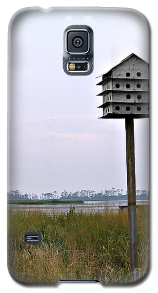 Solitude II Galaxy S5 Case by Nancy Dole McGuigan