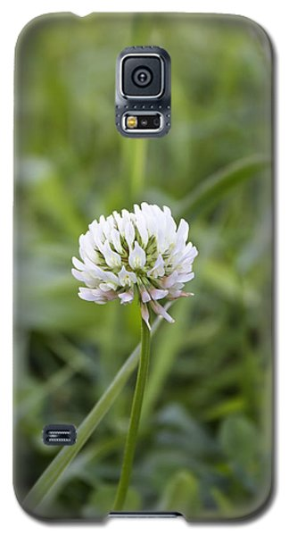 Solitude Galaxy S5 Case by Kathleen Holley