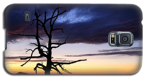 Something Wicked This Way Comes Galaxy S5 Case