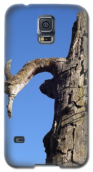 Soul Of The Wood Pecker Galaxy S5 Case by Gerald Strine