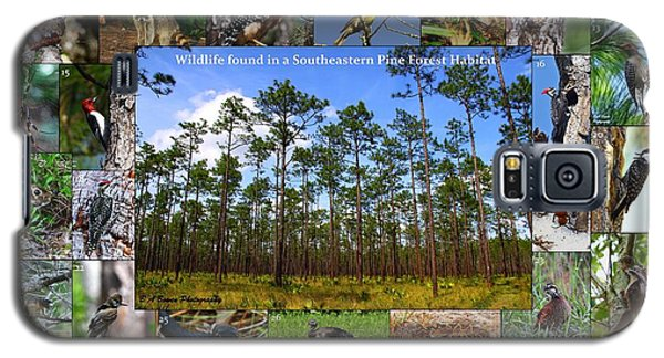 Southeastern Pine Forest Wildlife Poster Galaxy S5 Case