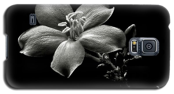 Spicy Jatropha In Black And White Galaxy S5 Case