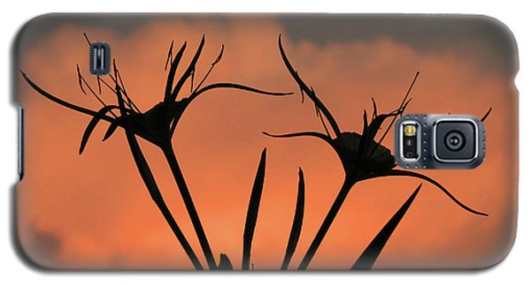 Spider Lilies At Sunset Galaxy S5 Case