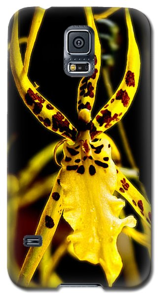 Spider Orchid Galaxy S5 Case
