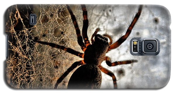 Spiders Home Galaxy S5 Case