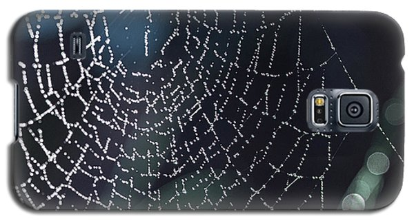 Spiderweb Blues Galaxy S5 Case by Artist and Photographer Laura Wrede