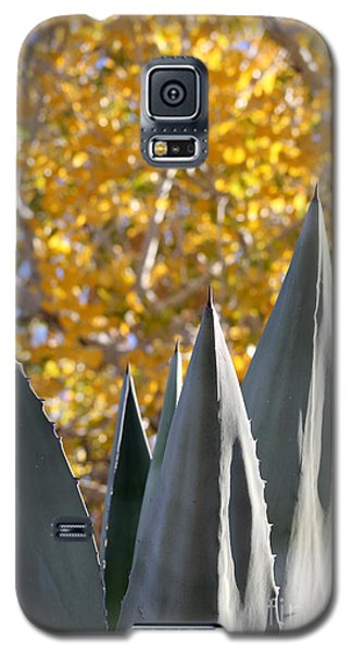 Spikes And Leaves Galaxy S5 Case
