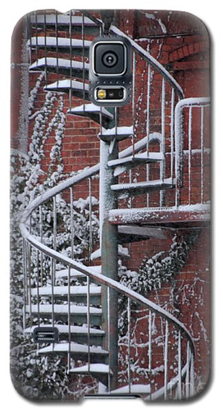 Spiral Staircase With Snow And Cooper's Hawk Galaxy S5 Case