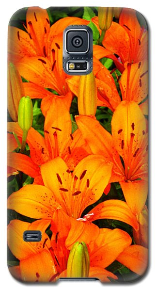 Galaxy S5 Case featuring the photograph Spiritual Bouquets At St. Francis Cathedral by Susanne Still