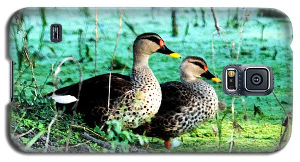 Galaxy S5 Case featuring the photograph Spot Bill Ducks by Pravine Chester
