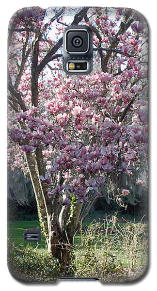 Saucer Magnolia Galaxy S5 Case - Spring Blooming by Suzanne Gaff
