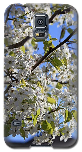 Galaxy S5 Case featuring the photograph Spring Blooms by Kay Novy