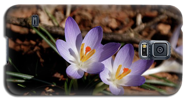 Galaxy S5 Case featuring the photograph Spring Crocus by Paul Mashburn