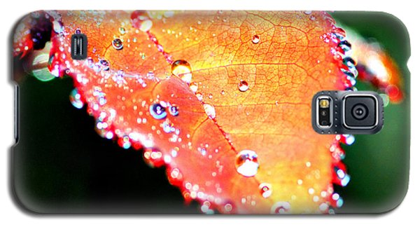 Spring Dew Galaxy S5 Case