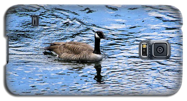 Galaxy S5 Case featuring the photograph Spring Goose by Wendy McKennon