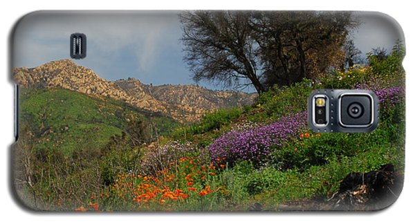 Galaxy S5 Case featuring the photograph Spring In Santa Barbara by Lynn Bauer