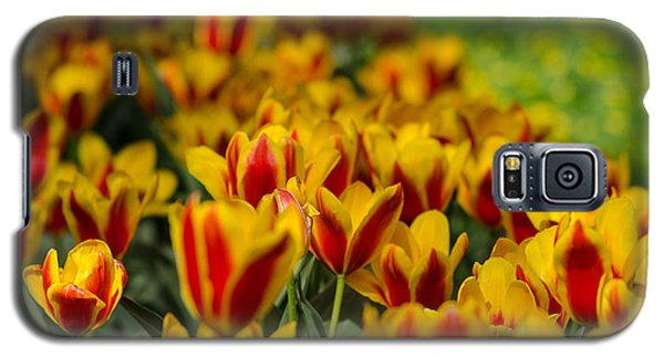 Spring Mood Galaxy S5 Case