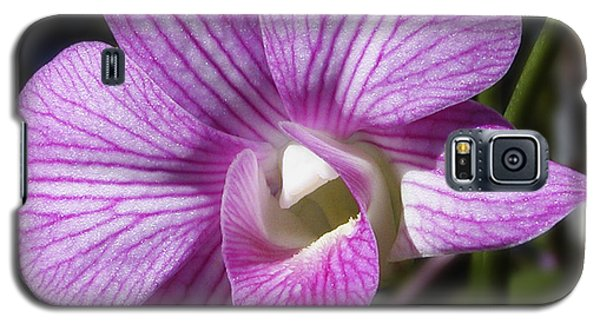 Spring Promise Galaxy S5 Case by Barbara Middleton