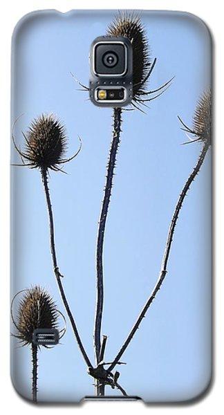 Spring Weeds 1 Galaxy S5 Case by Gerald Strine