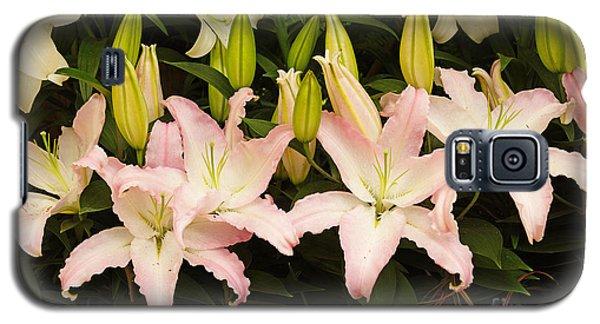 Springtime Blossoms Galaxy S5 Case