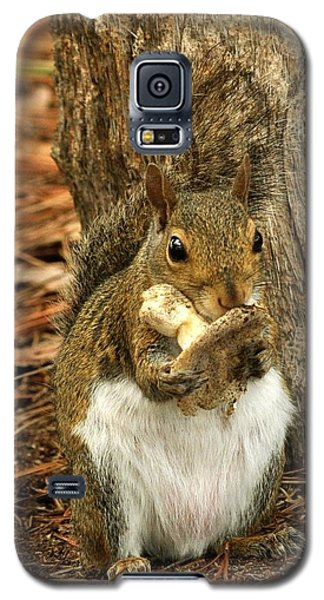 Squirrel On Shrooms Galaxy S5 Case