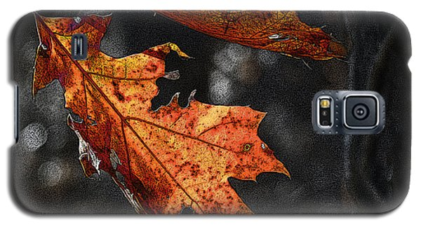 Galaxy S5 Case featuring the photograph Stained Glass In The Forest Cathedral by William Fields