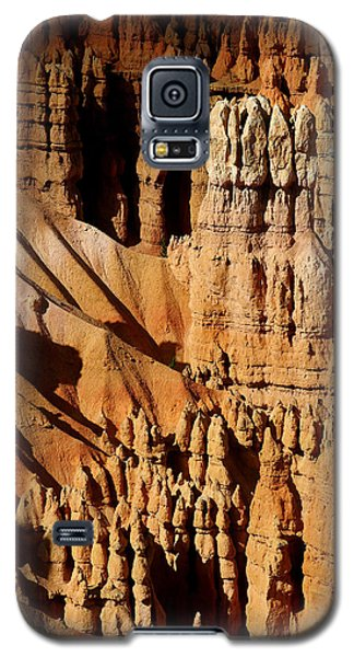 Galaxy S5 Case featuring the photograph Stand Tall by Vicki Pelham