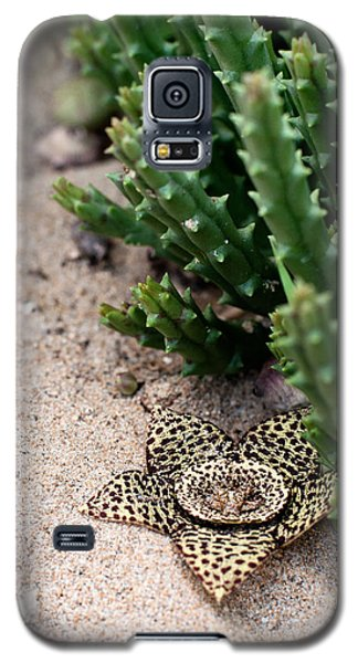 Galaxy S5 Case featuring the photograph Stapelia Variegata by Laura Melis