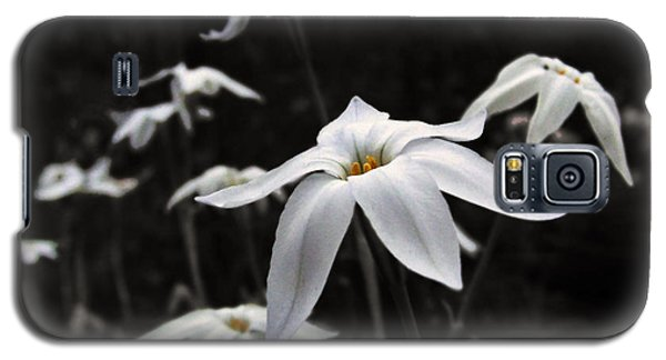 Galaxy S5 Case featuring the photograph Star Flowers by Deborah Smith