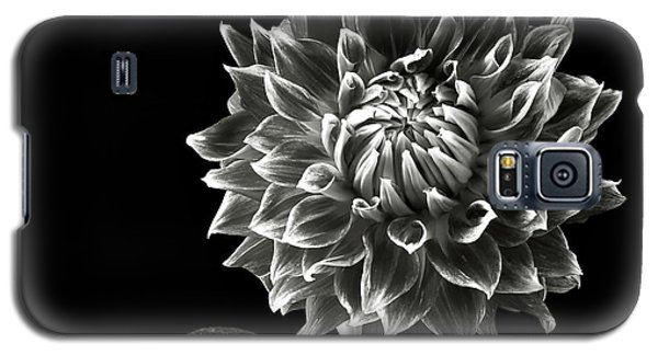 Galaxy S5 Case featuring the photograph Starburst Dahlia In Black And White by Endre Balogh