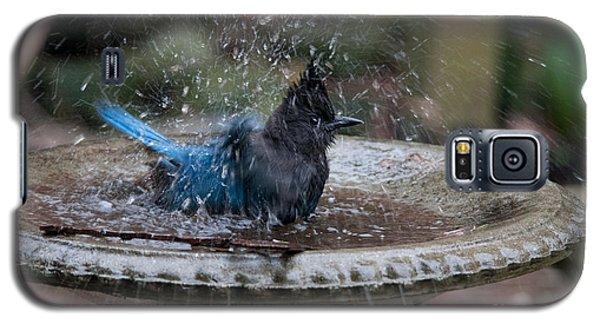 Galaxy S5 Case featuring the digital art Stellar Jay In The Birdbath by Carol Ailles