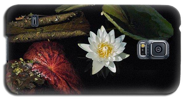 Still Life Galaxy S5 Case