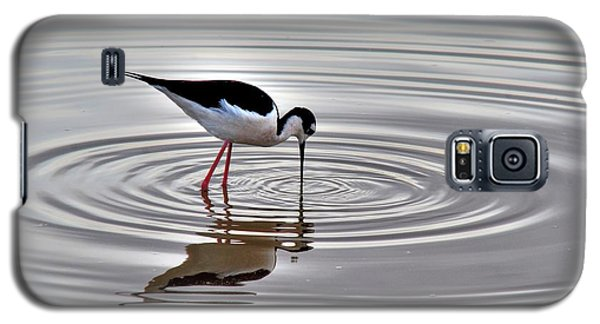 Galaxy S5 Case featuring the photograph Black-necked Stilt by Tam Ryan
