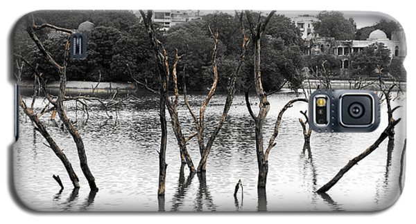 Stomps Of Trees In A Lake Galaxy S5 Case