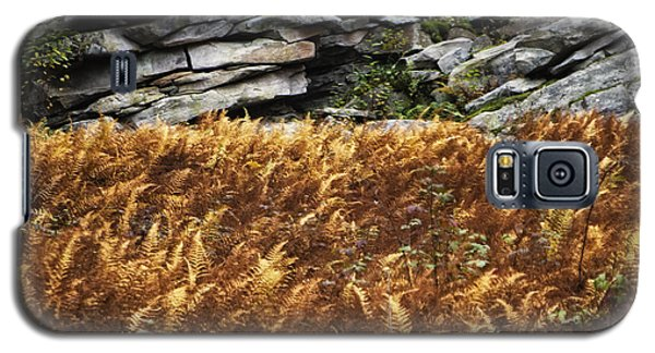 Stone Wall And Fern Galaxy S5 Case