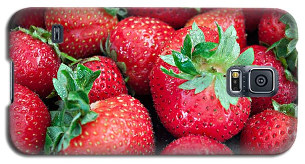 Strawberry Delight Galaxy S5 Case by Sherry Hallemeier